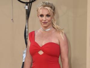 Explainer: Calls to #FreeBritney and Court Conservatorships